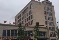 杭州临安青山湖中医院