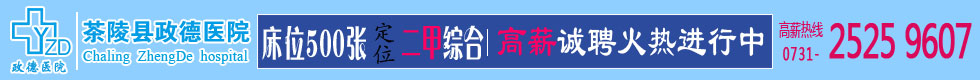 茶陵县政德医院2016年招聘